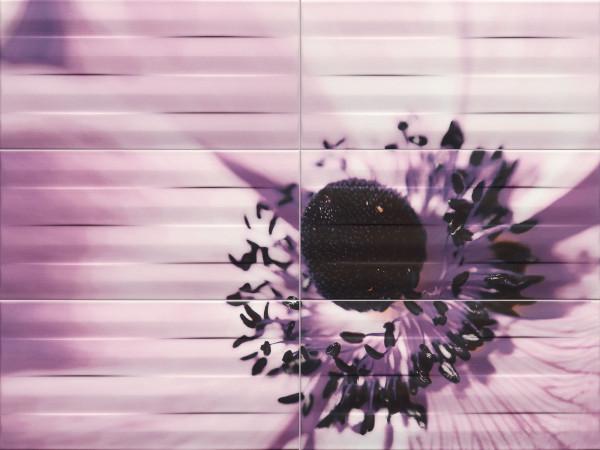 Maxima Violet 2 Wanddekor