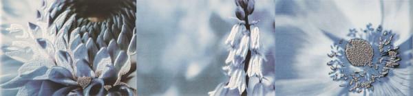 Maxima Blue 2 Wandbordüre